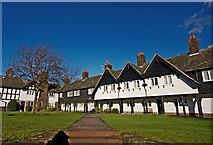 SJ3384 : King George's Drive, Port Sunlight by Paul Harrop