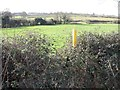 SK4424 : Stile choked with brambles by Ian Calderwood
