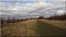 TQ5683 : Path alongside lake by Adrian Benn