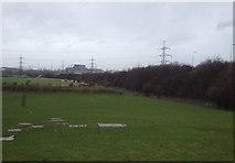 NZ5619 : Farmland beside the A1053, Lackenby by JThomas