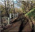 ST0697 : Riverside footpath, Penrhiwceiber by Jaggery