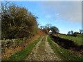 SE1241 : Track ascending from Eldwick Reservoir by Chris Heaton