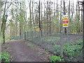 SK1828 : Fauld crater woodland track-Hanbury, Staffs by Martin Richard Phelan
