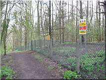 SK1828 : Fauld crater woodland track-Hanbury, Staffs by Martin Richard Phelan