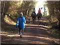 NZ0948 : walkers and horse-riders on the Waskerley Way by Oliver Dixon
