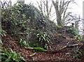 ST5655 : The Donjon by Neil Owen