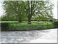 SK1727 : Springtime in Hanbury-Staffs by Martin Richard Phelan