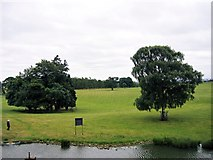 NZ1221 : The Grounds of Raby Castle by Jeff Buck