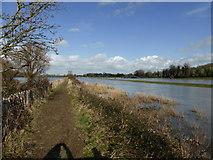 TQ5203 : Flooded River Cuckmere, Alfriston by PAUL FARMER