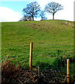 ST4492 : Westward from the far end of Well Lane, Llanvair Discoed by Jaggery