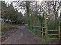 SS7808 : Two Moors Way in Morchard Wood by David Smith