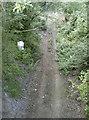 ST6163 : The old line below by Neil Owen