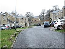 SE0726 : Hillbeck - Dyer Lane by Betty Longbottom