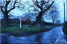 SS9502 : Mid Devon : Poundsland Cross by Lewis Clarke