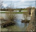 SP6406 : Ickford Bridge - Western parapet in floods by Rob Farrow