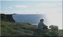 NM3348 : Treshnish Point by Alan Reid