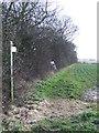 TM2475 : Footpath To Stradbroke by Keith Evans