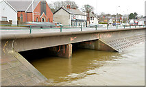 J3582 : The Three Mile Water, Whiteabbey (5) by Albert Bridge