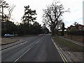 TM4289 : B1062 St.Mary's Road, Beccles by Adrian Cable