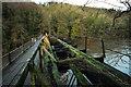 SO5817 : Old railway viaduct at Lydbrook by John Winder