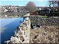 SY4691 : Flood Defences West Bay by Nigel Mykura