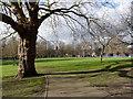 SK5540 : Radford Recreation Ground by Alan Murray-Rust