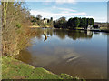 NZ8808 : River Esk flowing towards the weir by Pauline E