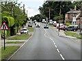 TL8646 : Westgate Street (A1092) Long Melford by David Dixon