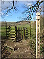 SK1583 : Footpath to Lose Hill from Castleton by Gareth James
