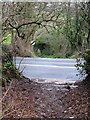SX8569 : Firestone Lane at the A381 by Derek Harper