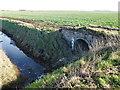 TF1219 : Old brick bridge on South Fen Road, Bourne by Richard Humphrey