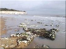 TR4068 : Limestone pavement of Stone Bay by David Anstiss