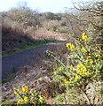 SK5447 : Robin Hood Way, Hucknall Aerodrome Vicinity, Notts. by David Hallam-Jones