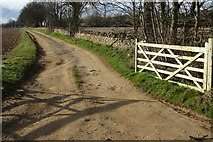 SP1726 : Track up to Long Barrow by Philip Jeffrey