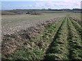 SU2580 : Tumulus on Hinton Downs by Vieve Forward