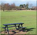 SK5346 : Bulwell Hall Park, Bulwell, Notts. by David Hallam-Jones