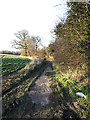 TM4189 : Footpath to Bungay Road by Adrian Cable