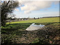 ST5779 : Puddle and field, Brentry by Derek Harper