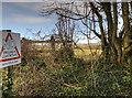 ST0572 : Footpath Entrance near Caemaen Farm by Guy Butler-Madden
