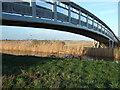 TL5567 : Bridge over Reach Lode on Tubney Fen by Richard Humphrey