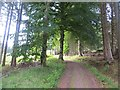 NN8667 : Road out of Blair Atholl by Richard Webb