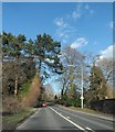 SJ5971 : Forest Road at Cuddington by Anthony Parkes