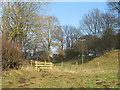 SE8591 : Footpath in White Dale by Gordon Hatton