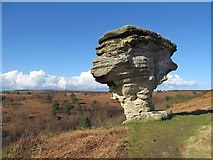 SE8791 : Low Bride Stones by Gordon Hatton