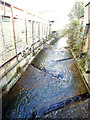 TQ3875 : River Quaggy in Lewisham by Stephen Craven
