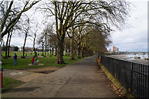 TQ2575 : The Thames Path at Wandsworth Park by Ian S