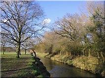 TQ2172 : Beverley Brook near Robin Hood Gate, Richmond Park by Stefan Czapski