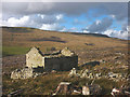 SD8388 : Ruined barn in clear-felled forest, Snaizeholme by Karl and Ali