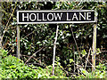TM2499 : Hollow Lane sign by Adrian Cable