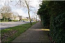 TQ2688 : The A1, Lyttelton Road by Ian S